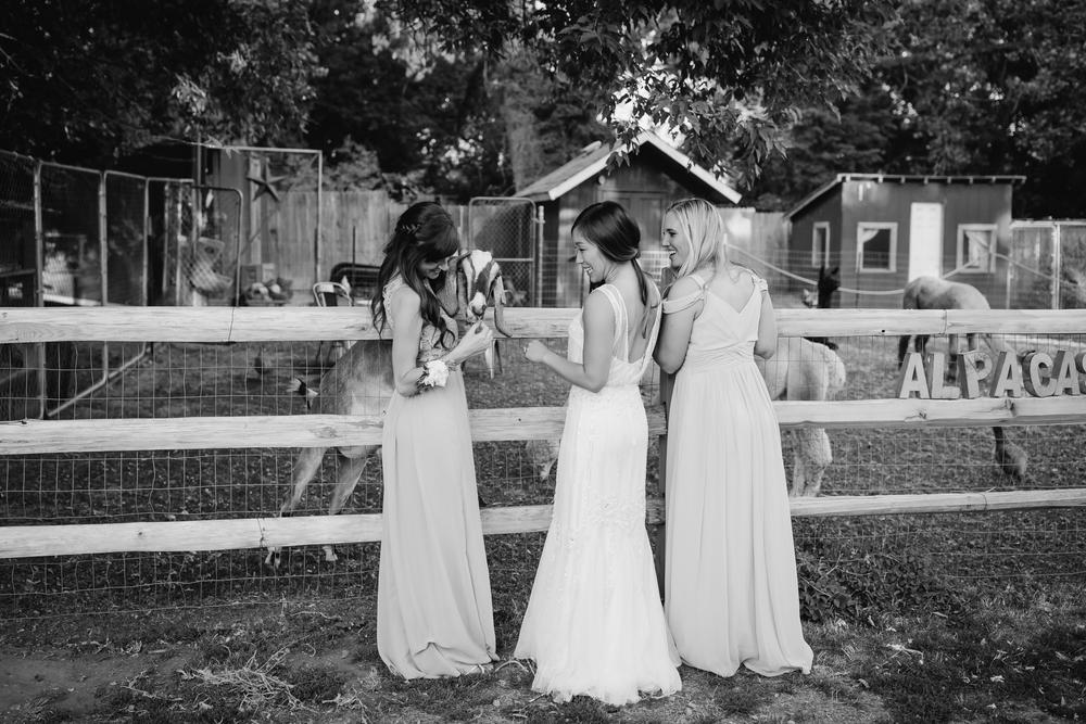Lyons Farmette Wedding 55.jpg