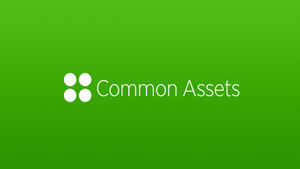 Common Assets