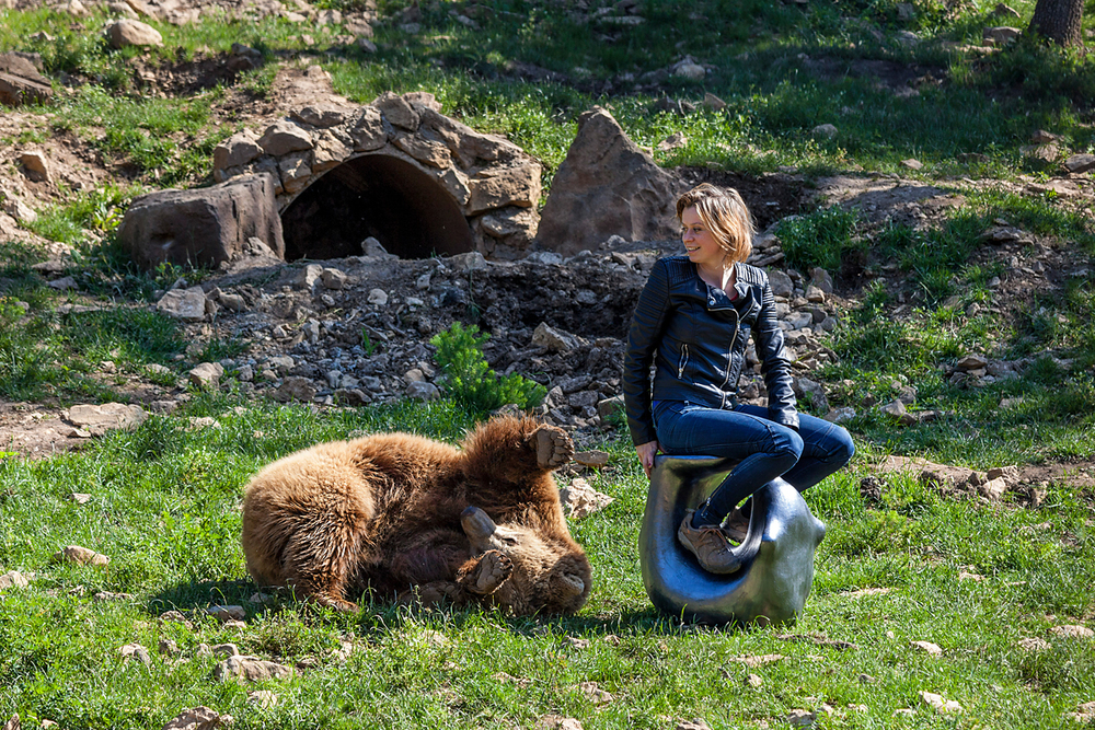 TAME BEAR IN THE WILD WITH EDIT SZABO