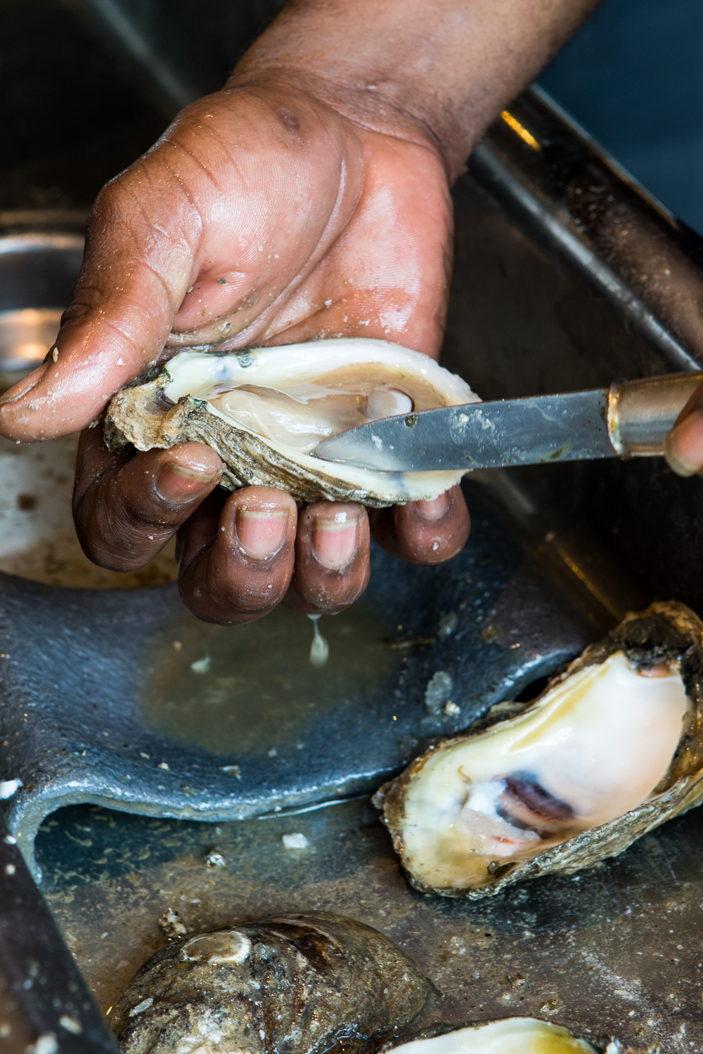 20170925_Oysters_431.jpg