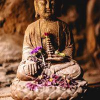 buddha altar.jpg