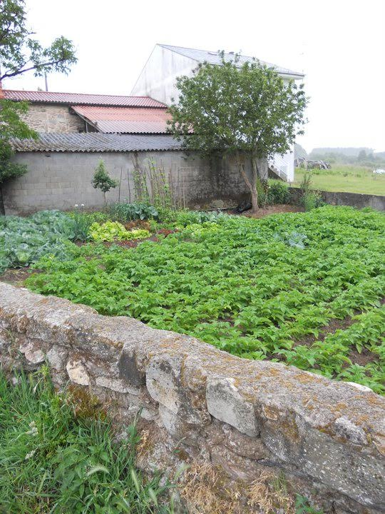 The Galician farm Elaine volunteered at.