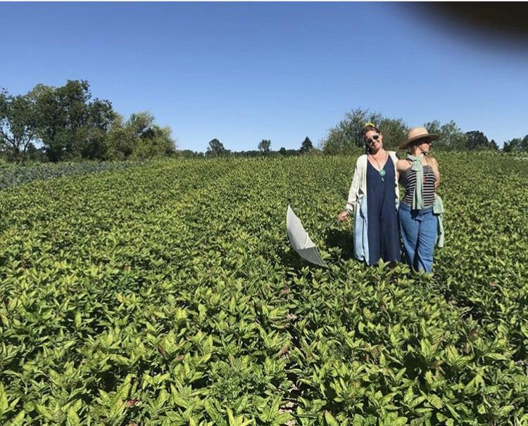 FOUNDing farmers of VVF - Elaine Walker and Kara Gilbert