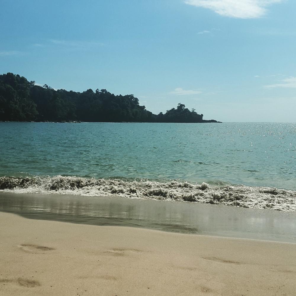 The beach inside Manuel Antonio National Park