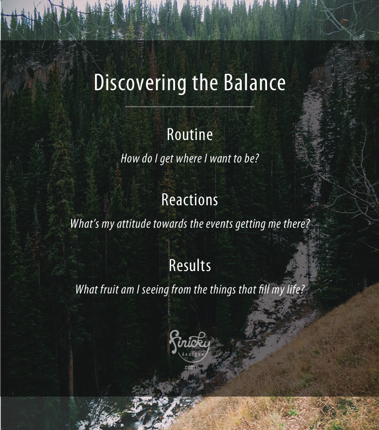 Discovering the Balance- Routine, Reactions, and Results | finicky designs