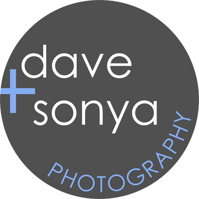 Dave and Sonya Old Logo