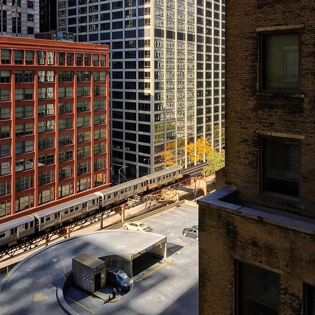 #fall in #chicago. Not a bad #cityview. More to follow... #fallfeels #fallinthecity #fallstyle #fallfoliage #cityscape #citylife #cityviews #architecturephotography #architecturelovers #architecture #chicagoarchitecture #chicagoloop #downtown #chicagotrain #fallcolor #color_vibe #color_photo #color_rgb #colormood #color_fab #nateabramowski #nateabramowskiphotography #adventureisoutthere