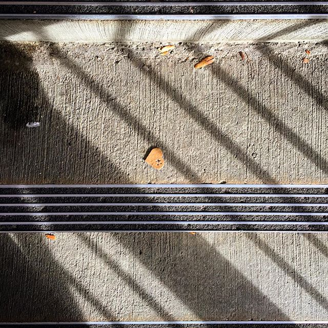 I love the things I see when looking down. Reminds me there is #magic everywhere. #heart #walkyourcamera #melodrama #light #qualityoflight #sunlight #stairs #grandrapids #grandrapidsmi #experiencegr #lightandshadow #shaddow #nateabramowski #latefall #fall #falllight #colorvibe #color_rgb #fallcolors #landscape #urban #citywalk #cityscape