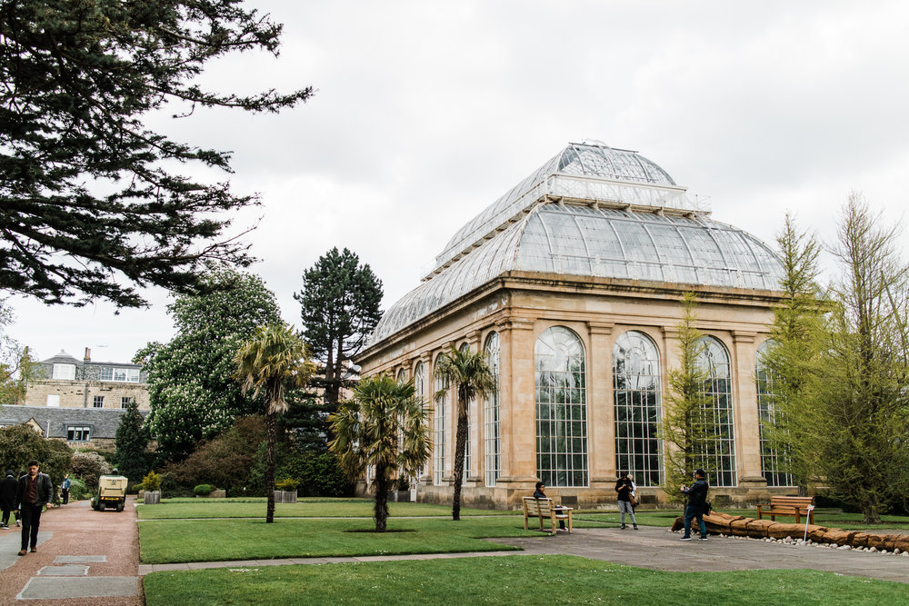 Edinburgh botanical gardens + glass house!