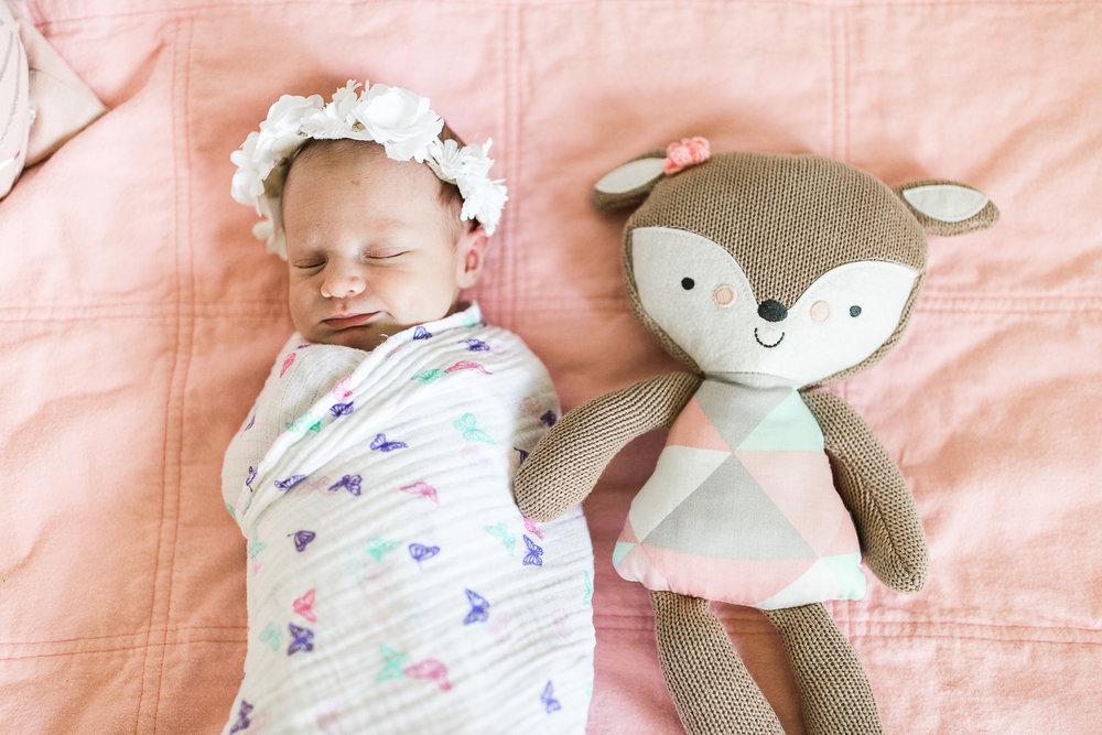 newborn blogs-18.jpg