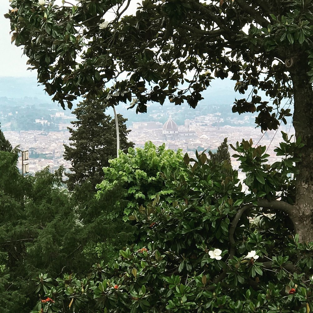 Looking at Florence from Fiesole