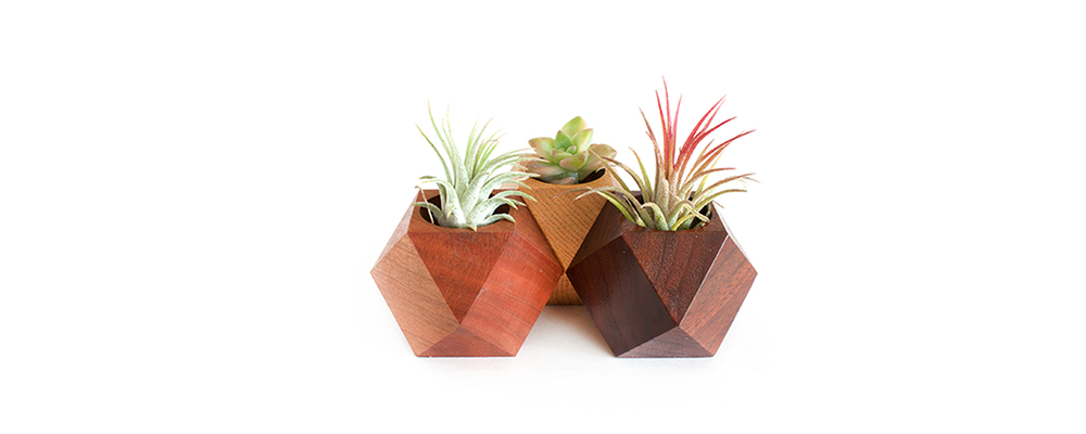 NEW ARRIVALS FROM JAPAN   Decorate your space with  wooden geometric planters by to.mo.ni  Exclusively at Northerns   SHOP NOW