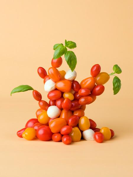 Tomato-tree.jpg