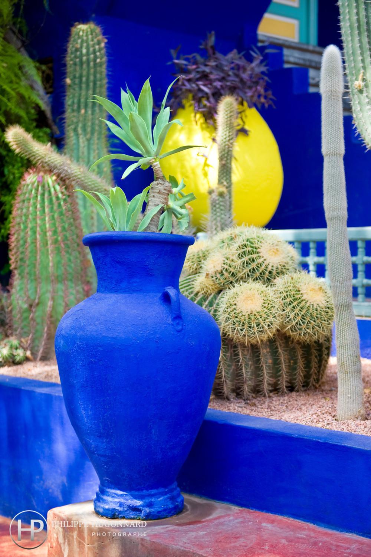 Yves Saint Laurent Jardin Morelle Morocco Branding By Brandi