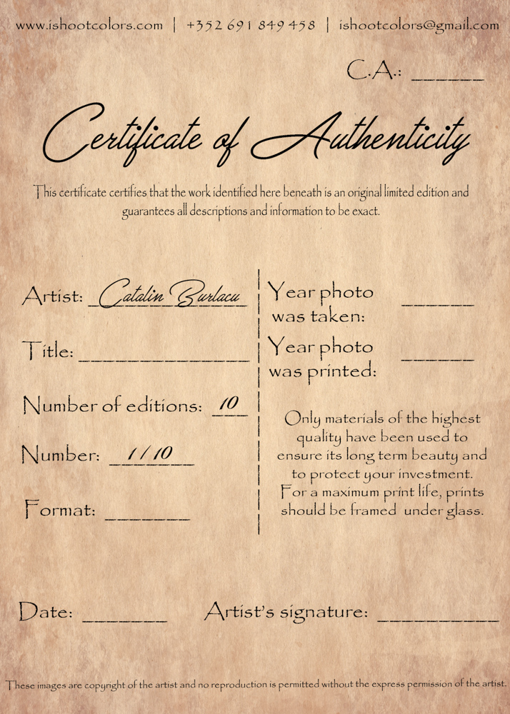 Certificate of Authenticity art print