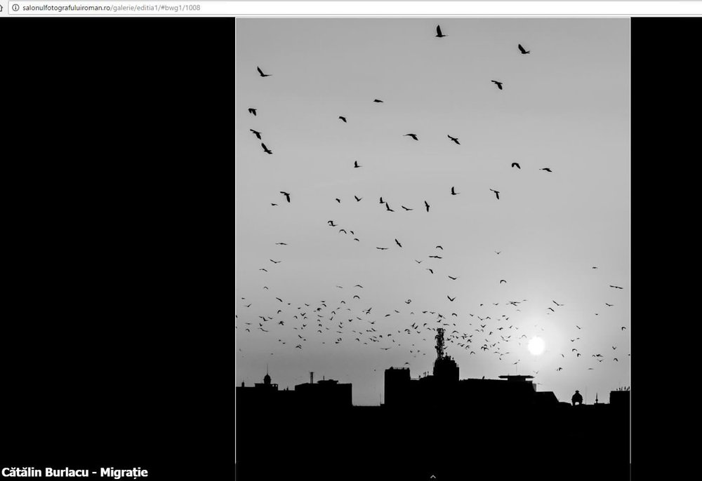 Catalin Burlacu - Street Photographer Luxembourg  - www.ishootcolors.com - online exhibition 2.JPG