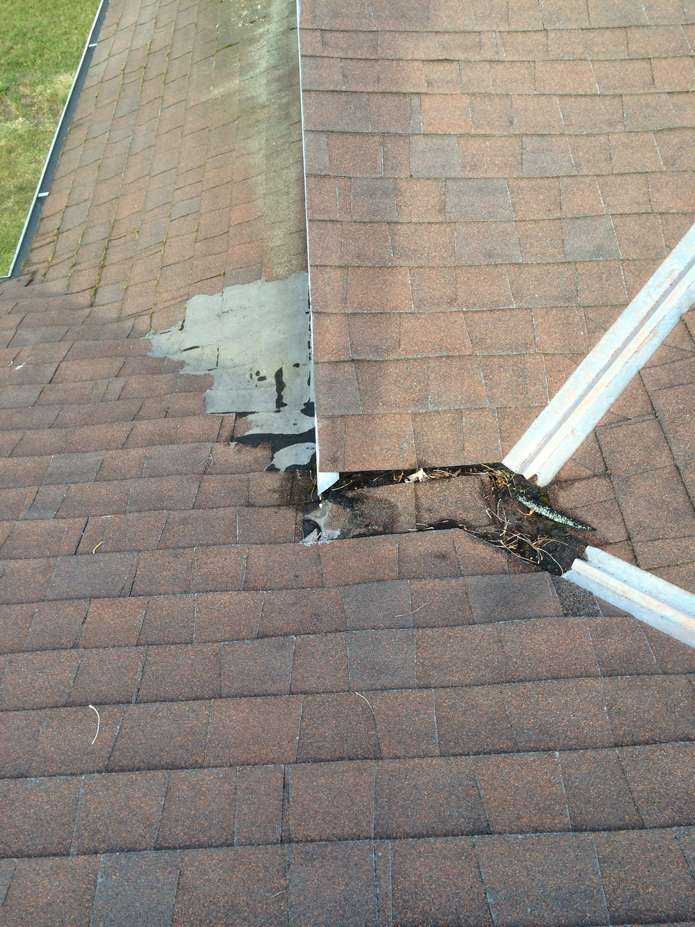 Leaking asphalt shingle roof