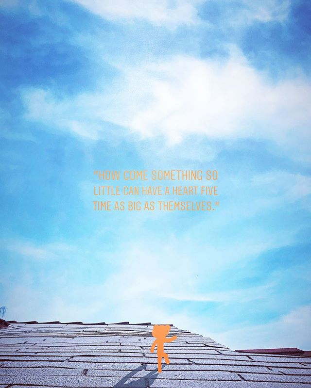 #chooselife #chooselove #saveme #notfromhere #outerspace #happy #enjoylife #trees #tiny #climbing #hiking #alien #orange #discover_earth #positivevibes #love #imissyou #aesthetictumblr #asthetic #ineedyou 🍊💛