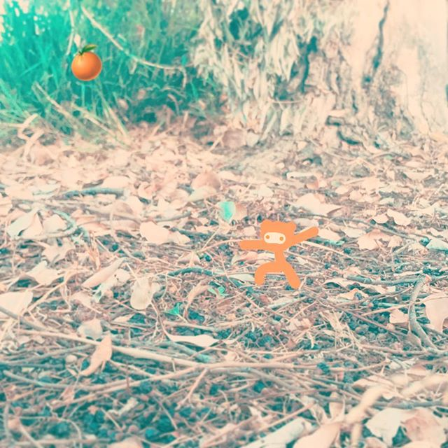 #chooselife #chooselove#saveme #notfromhere #outerspace #happy #enjoylife #trees #tiny #climbing #hiking #alien #orange #asthetic #iloveyou #discover_earth 🍊💛