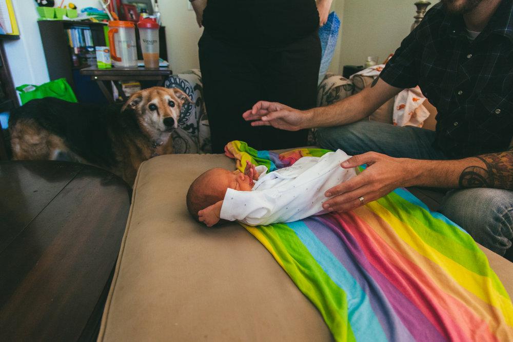 Dexter Newborn -67.jpg