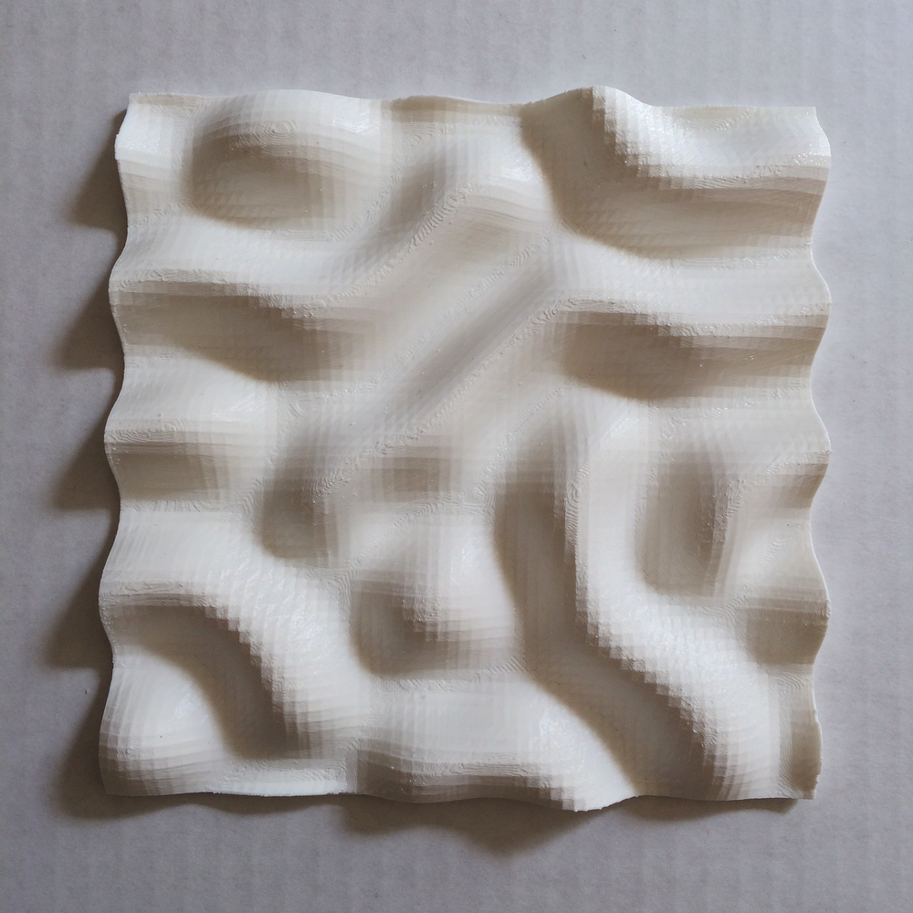 3D-Printed-Reaction-Diffusion-Makerbot-Parametric++-2.png