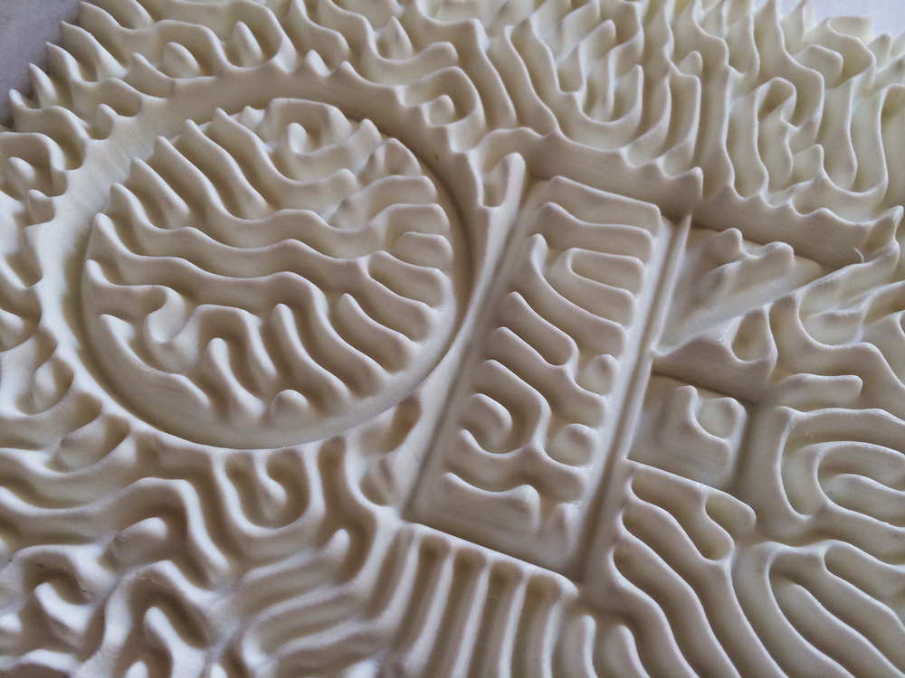 3D-Reaction-Diffusion-Openframeworks-3D-Printed-Makerbot-Parametric++.png