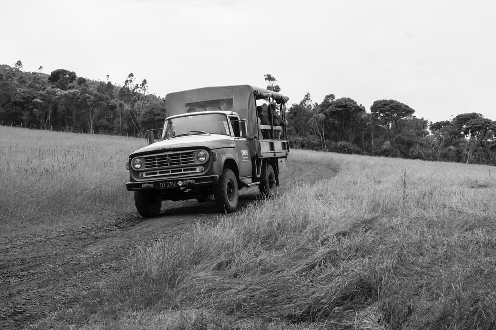 wedding truck (5 of 6).jpg
