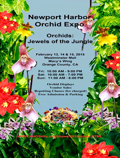 Three days of beautiful orchid displays and fantastic plants to add to your collection.