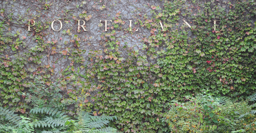 ivy portland museum.jpg