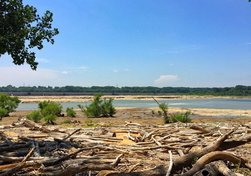 Falls of the Ohio, Fossil Beds