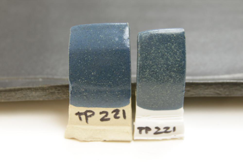 TP221.jpg