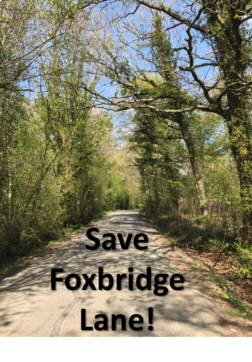 foxbridge news essay Bridges essays a bridge is a structure designed to provide continuous passage over something bridges usually carry trains, cars, water, or power lines there are about eight kinds of bridges, beam, cantilever, arch, truss.