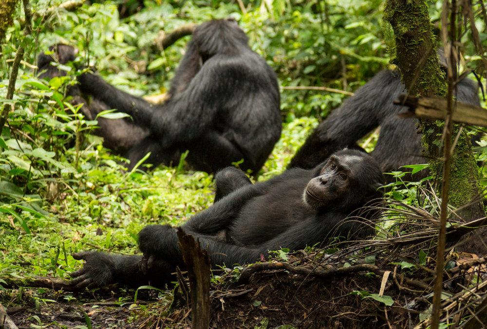 20140818-Uganda-1666.jpg