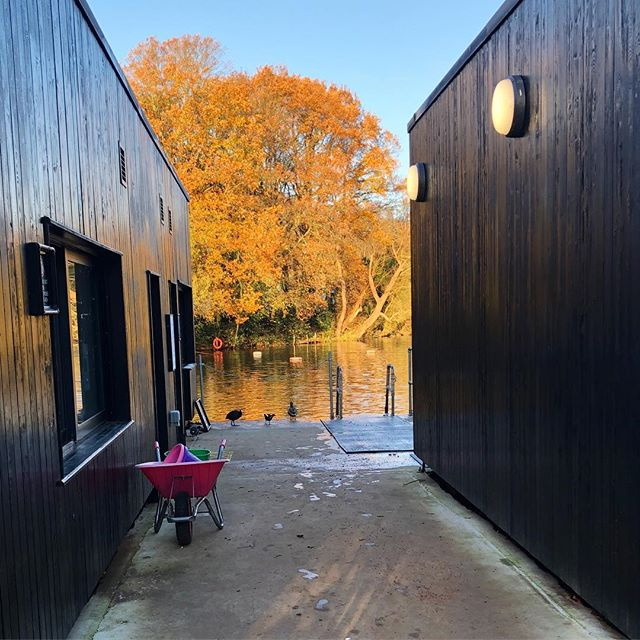 #wadabags welcome weekend break at the ponds for a short sharp swim. 6C sunshine and autumn colours. Perfection! #hampsteadheath #hampsteadponds #seasons #wildswim #londonlife #secretlondon #relaxationtime #naturemeditation  #itscoldoutside #lovelondon