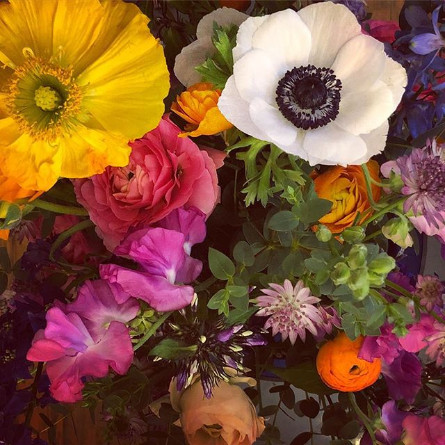 When all you want is spring 🌸🌷🌺 #springisintheair #flowers #prettyblooms #springtime #givemesunshine