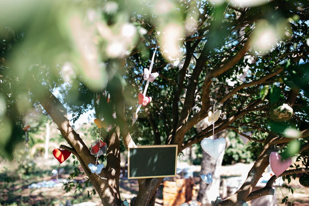 casamento umuarama, casamento no campo, casamento na fazenda, fotografo de casamento umuarama, fotografo umuarama, farwedding miniwedding, casamento personalizado,  foto009.jpg