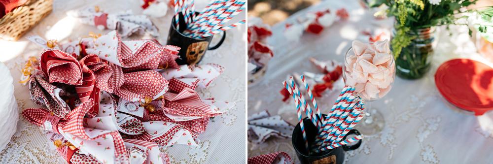 casamento umuarama, casamento no campo, casamento na fazenda, fotografo de casamento umuarama, fotografo umuarama, farwedding miniwedding, casamento personalizado, m05.jpg