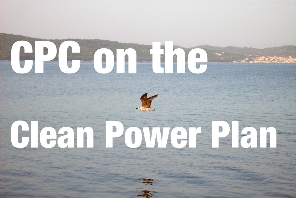 The CPC has released an statement in support of the new Clean Power Plan. Be sure to check the full statement for quotes from the Co-Chairs.