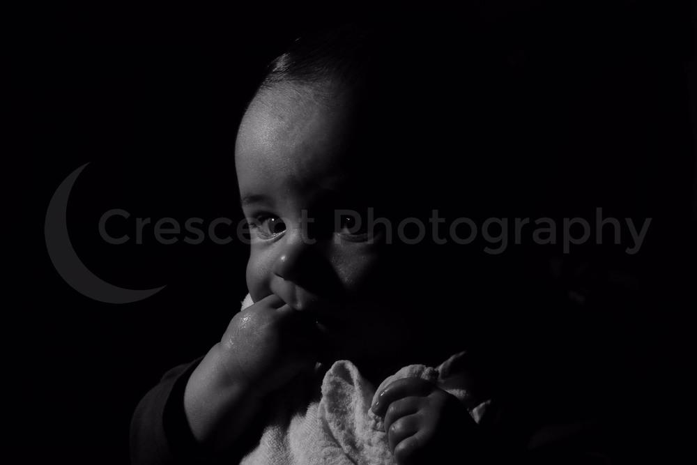 Newborn Baby Portrait Photographer, Baby Photographer Auckland ...