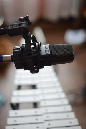 mic bells RVA_7477-M.jpg