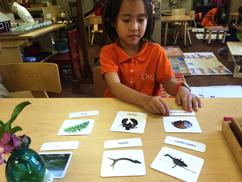 """Reading and decoding the """"er"""" phonogram."""