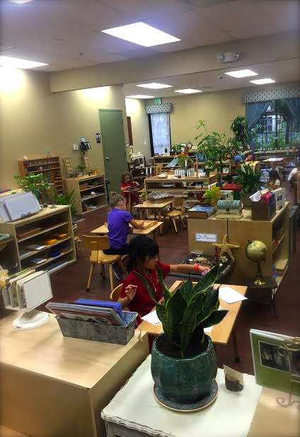 The Montessori environment instills PEACE, by nature and the connection the child makes with the materials.