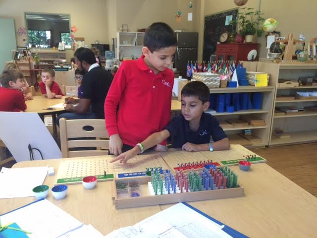 Long division work using the racks and tubes material