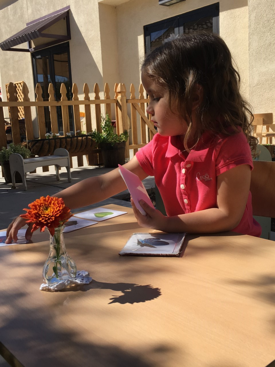 Vocabulary Enrichment Cards