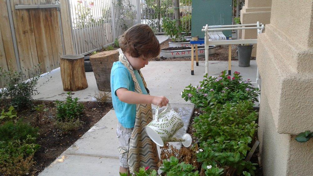 Watering the Garden