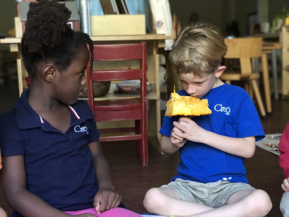 Using our Senses to Explore a Pumkin