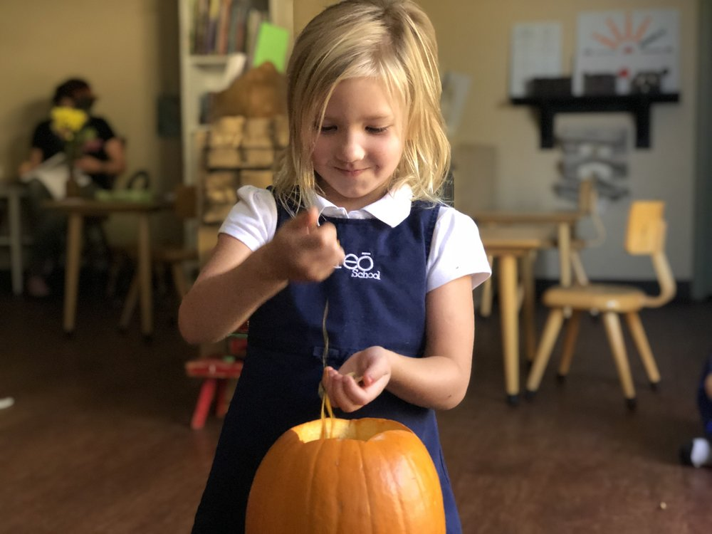 Making Pumpkin Seeds