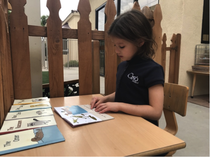Reading Independently