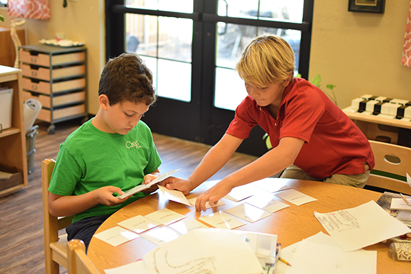 Learning Characteristics of Vertebrate Classes