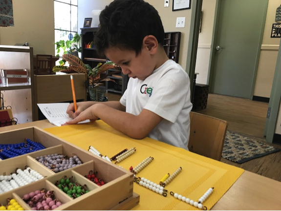 Multiplication Bead Bars
